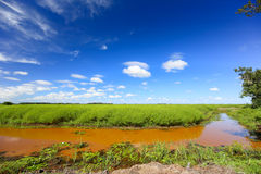 Muddy river banks with blue sky and green field Stock Photo