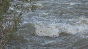 Muddy River in Flood, Flooding by Rain, Storm, Flooded, Calamity