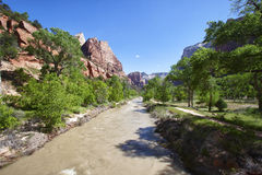 Muddy river in the Zion Canyon National Park, Utah Stock Photo