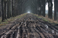 Muddy road Stock Images