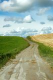 Muddy road. A muddy road in a Tuscany landascape with green grass on the left and yellow harvested wheat on the right Stock Photos