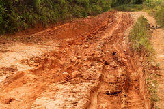 Muddy road through the jungle Stock Images