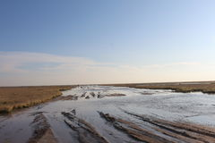 Muddy road in an African Salt Pan Royalty Free Stock Images