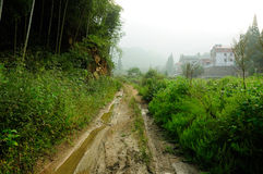 Muddy Road in Anji County China Royalty Free Stock Photography