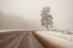 Muddy road in the city of Yuriev winter in the fog. Russia. The Golden ring of Russia Royalty Free Stock Photo