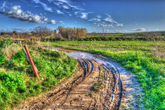 Muddy road. On a cloudy day Stock Photos