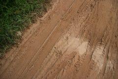 Muddy Road con el neumático diagonal sigue la vegetación lateral herbosa y remiendos arenosos Foto de archivo libre de regalías