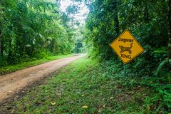 Muddy road in a jungle leading to Cockscomb Basin Wildlife Sanctuary, Belize. Sign jaguar xing crossing.  stock photography