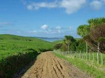 Muddy road on Motutapu Island. Muddy road leading downwards the green hills of Motutapu Island near Auckland Stock Photography