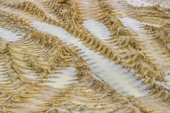 Muddy road with tire tracks and puddles, background Royalty Free Stock Images