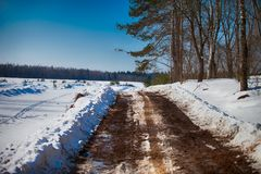 Muddy road in winter Royalty Free Stock Image