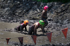 Muddy royalty. Three participants dressed as royalty with tiaras and colored hair (one, a man in drag) crawl through the mud at the 2012 mudathlon Stock Images