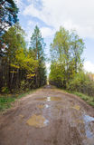 Muddy rural road Stock Images