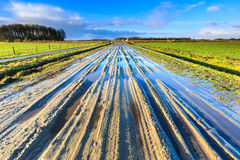 Muddy sand lane in landscape on sunny day Stock Photo
