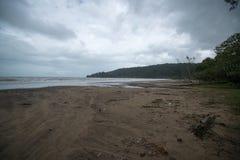 Muddy sea beach. On the way to Bako National Park - Borneo , Sarawak Malaysia stock image