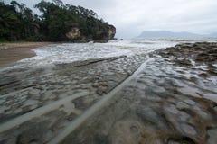 Muddy sea beach. On the way to Bako National Park - Borneo , Sarawak Malaysia stock photos
