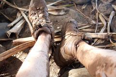 Muddy Shoes and Legs Royalty Free Stock Images