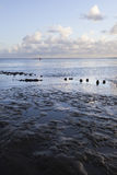 Muddy shore of dutch waddenzee at low tide on Vlieland Royalty Free Stock Image