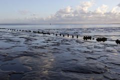 Muddy shore of dutch waddenzee at low tide on Vlieland Royalty Free Stock Images
