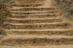 Muddy staircase trail Royalty Free Stock Image