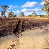 Muddy track in australia Royalty Free Stock Photo