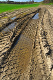 Muddy tracks Stock Photos