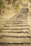 Muddy trail. A staircase trail climbing through a muddy park Stock Photo