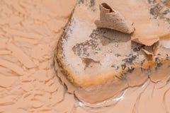 Muddy vaggar att torka i solen i lerigt vatten efter ett stort regn på Badlandsnationalparken royaltyfri fotografi