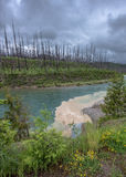 Muddy Water Flows in i klar liten vik Royaltyfria Bilder