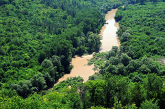 Muddy Waters des Yantra-Flusses Stockfotografie