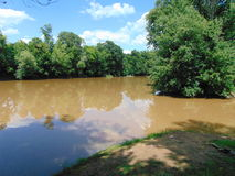 Muddy Waters. A piece of the Kanawha River in Calhoun County, West Virginia; muddy waters from a recent storm, against a thick shoreline of trees Royalty Free Stock Photography