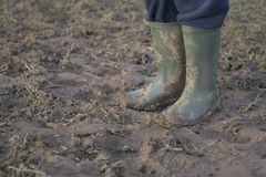 Muddy Wellies Stock Images