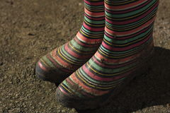 Muddy Wellington boots. Striped wellies in the morning sun, muddy after playing in the garden Stock Image