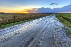 Muddy wet sand lane in grassland landscape Stock Photography