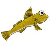 Mudfish illustrazione vettoriale