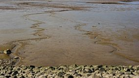 Mudflat in de mond van rivier Weser at low tide stock foto