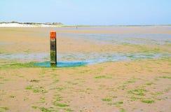 Mudflat met rode strandpool die kustlijn, Nederland merken stock foto's
