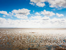 Mudflat Royalty Free Stock Image