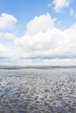 Mudflat Royalty Free Stock Images