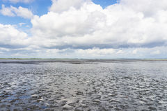 Mudflat Stock Photos