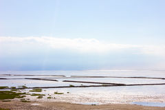 Mudflat Stock Images