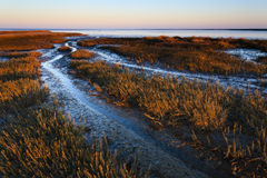 Mudflat of the Waddensea. Royalty Free Stock Photography