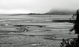 Mudflats во время отлива на туманный день в черно-белом стоковое фото rf