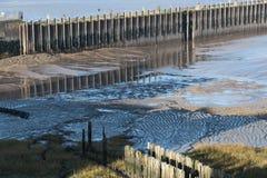 Mudflats причала стоковые изображения