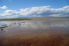 mudflats στοκ φωτογραφίες με δικαίωμα ελεύθερης χρήσης