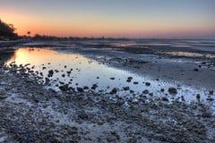 Mudflats de Sandgate no crepúsculo Foto de Stock Royalty Free