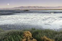Mudflats di San Francisco Bay con la luna piena sopra Diablo Range Fotografia Stock Libera da Diritti