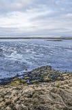 Mudflats dichtbij Borgarnes stock afbeeldingen