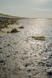 Mudflats of a Dutch estuary at low tide Royalty Free Stock Photography