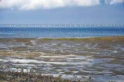 Mudflats, estuarium en brug stock fotografie
